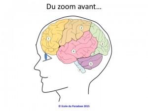 zoom avant